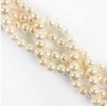 Zdjęcie - Perły seashell kulka biała spłaszczona