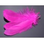 Zdjęcie - Pióra naturalne barwione koloru neonowo różowego