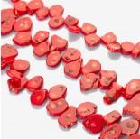 Zdjęcie - Plastry z czerwonego korala z wżerami