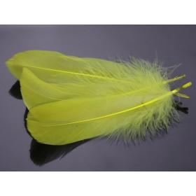 Zdjęcie - Pióra naturalne barwione koloru cytrynowego