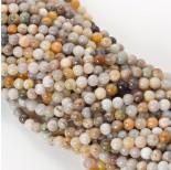 Zdjęcie - Koral fossil kulka gładka