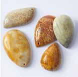 Zdjęcie - Koral skamieniały fossil zawieszka łezka