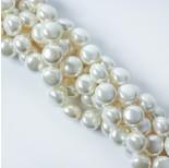 Zdjęcie - Perły seashell button białe