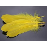 Zdjęcie - Pióra naturalne barwione koloru żółtego