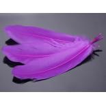 Zdjęcie - Pióra naturalne barwione koloru fioletowego