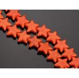 Zdjęcie - Howlit gwiazdka pomarańczowa