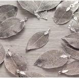 Zdjęcie - Liść naturalny metalizowany antyczne srebro